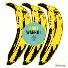 Andy Warhol: The Complete Commissioned Record Covers Cover Image