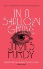 In a Shallow Grave (Valancourt 20th Century Classics) Cover Image