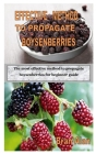 Effective Method to Propagate Boysenberries: The most effective method to propagate boysenberries for beginner guide Cover Image