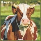 Dairy Cow 2021 Wall Calendar: Official Animal Cows Wall Calendar 2021 Cover Image