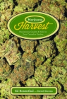 Marijuana Harvest: How to Maximize Quality and Yield in Your Cannabis Garden Cover Image