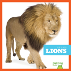 Lions (Big Cats) Cover Image