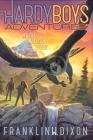As the Falcon Flies (Hardy Boys Adventures #24) Cover Image