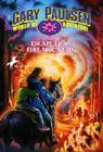 Escape from Fire Mountain (World of Adventure #3) Cover Image