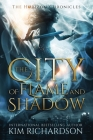 The City of Flame and Shadow Cover Image
