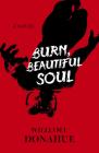 Burn, Beautiful Soul Cover Image