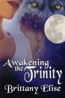 Awakening the Trinity Cover Image