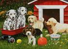 Puppy Party 60 PC Puzzle Cover Image