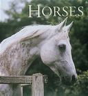 Horses (Tiny Folio) Cover Image