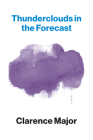 Thunderclouds in the Forecast: A Novel Cover Image