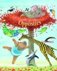 Opposites Cover Image
