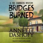 Bridges Burned (Zoe Chambers Mystery #3) Cover Image