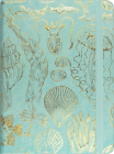Sealife Sketches Journal Cover Image