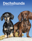 Dachshunds 2021 Engagement Cover Image