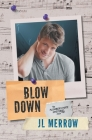 Blow Down (Plumber's Mate Mysteries #4) Cover Image