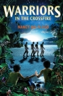 Warriors in the Crossfire Cover Image