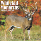 Whitetail Monarchs 2020 Wall Calendar Cover Image