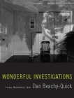 Wonderful Investigations: Essays, Meditations, Tales Cover Image