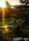 Sunrise Park Sketchbook (Natural Wonders #48) Cover Image
