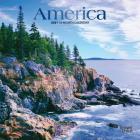 America 2021 Mini 7x7 Foil Cover Image