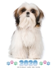 2020 Shih Tzu Planner - Weekly - Daily - Monthly Cover Image