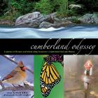 Cumberland Odyssey: A Journey in Pictures and Words along Tennessee's Cumberland Trail and Plateau Cover Image