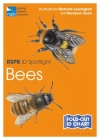 RSPB ID Spotlight - Bees Cover Image