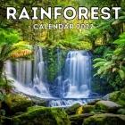 Rainforest Calendar 2022: 16-Month Calendar, Cute Gift Idea For Forest Lovers Women & Men Cover Image
