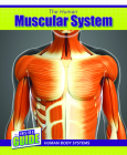 The Human Muscular System Cover Image