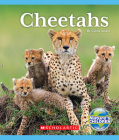 Cheetahs (Nature's Children) Cover Image