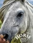The Horse 2021 Calendar Cover Image