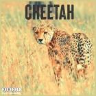 Cheetah 2021 Wall Calendar: Official Big Cats Calendar 2021, 18 Months Cover Image