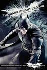 The Dark Knight Legend: Junior Novel Cover Image