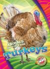 Turkeys (Animals on the Farm) Cover Image