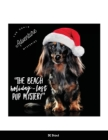 The Doxie Adventure Mysteries The Beach Holiday-Lost Pup Mystery Cover Image