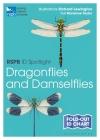 RSPB ID Spotlight - Dragonflies and Damselflies Cover Image