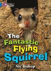 The Fantastic Flying Squirrel (Collins Big Cat) Cover Image