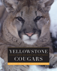Yellowstone Cougars: Ecology before and during Wolf Restoration Cover Image