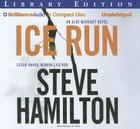Ice Run (Alex McKnight #6) Cover Image
