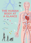 The Human Body at a Glance Cover Image