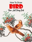How to Draw Bird Draw And Coloring Book: For Kids Cover Image