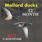 Calendar 2022 Mallard ducks 12 MONTH: Official Ducks Calendar 2022,12 Months Calendar, Wild Animals, Square Calendar 2022 Cover Image