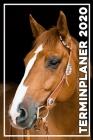 Terminplaner 2020: Jahresplaner von September 2019 bis Dezember 2020 mit Pferd - Planer mit 174 Seiten in weiß im Format A5 mit glänzende Cover Image