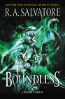 Boundless: A Drizzt Novel (Generations #2) Cover Image