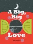 A Big Big Love Cover Image