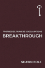 Breakthrough (Prophecies, Prayers & Declarations #1) Cover Image