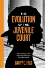 The Evolution of the Juvenile Court: Race, Politics, and the Criminalizing of Juvenile Justice (Youth #4) Cover Image