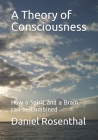 A Theory of Consciousness: How a Spirit and a Brain can be Combined Cover Image