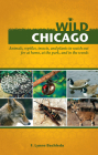Wild Chicago: Animals, Reptiles, Insects, and Plants to Watch Out for at Home, at the Park, and in the Woods Cover Image