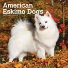 American Eskimo Dogs 2020 Square Cover Image